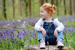 Toddler sat on tree stump surrounded by blue bells