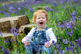 Child laughing portrait in bluebells